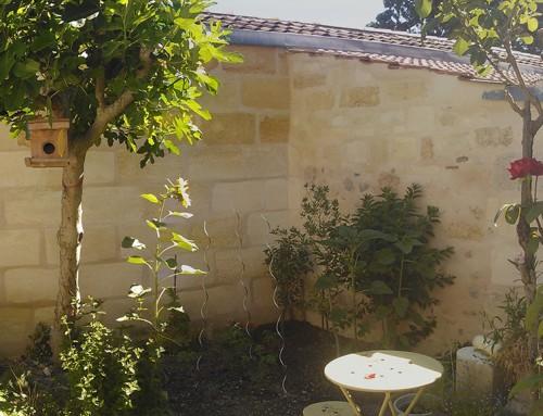 Rénovation échoppe jardin