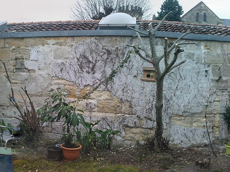 Rénovation échoppe jardin avant les travaux