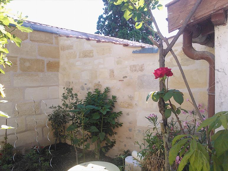 Rénovation échoppe jardin résultat coin du mur