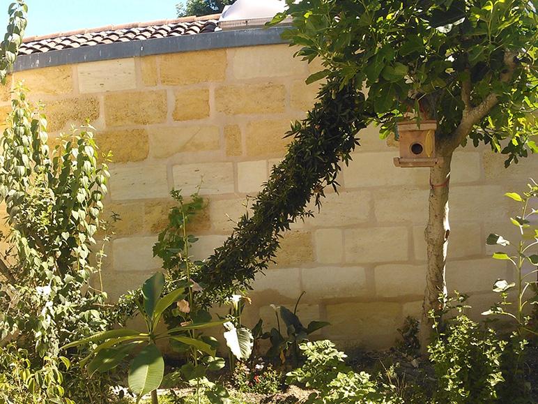 Rénovation échoppe jardin résultat